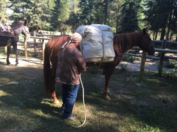 Mule And Horse Packing Guide Classes Bridger Institute